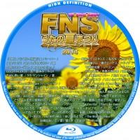 FNSうたの夏まつり 2014