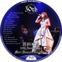 浜田麻里 30th Anniversary Mari Hamada Live Tour -Special-