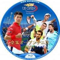 全米オープンテニス 2014