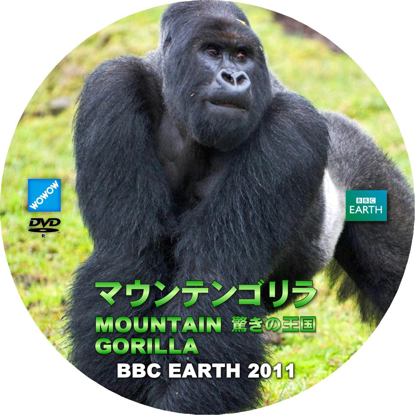 BBC EARTH 2011 マウンテンゴリラ 驚きの王国 DVDラベル
