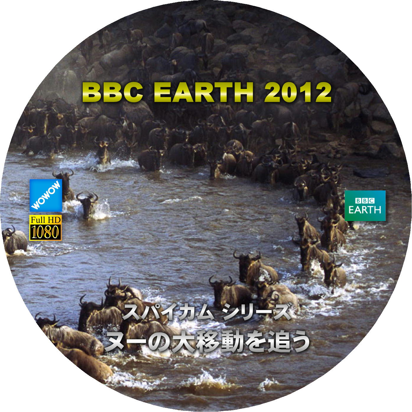 BBC EARTH 2012 ヌーの大移動を追う DVDラベル