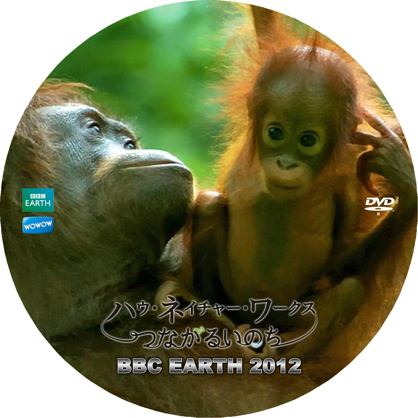 BBC How Nature Works DVDラベル v1