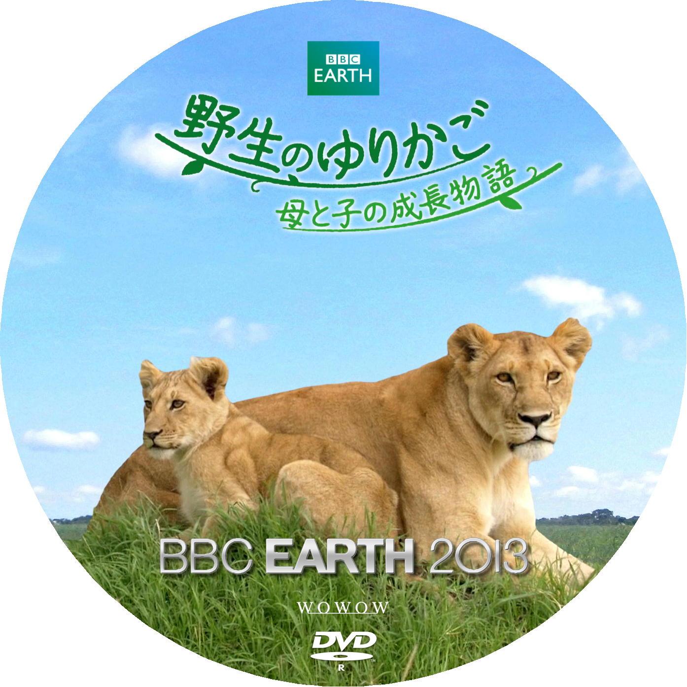 ライオン DVDラベル