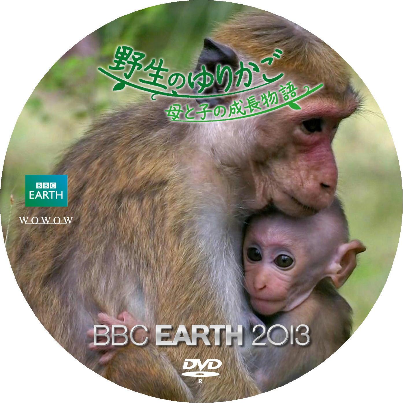 トクモンキー DVDラベル