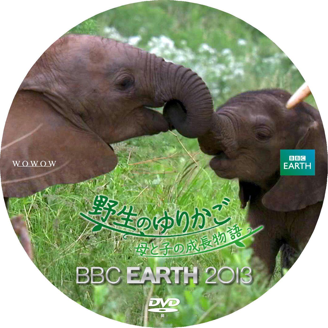 アフリカゾウ DVDラベル
