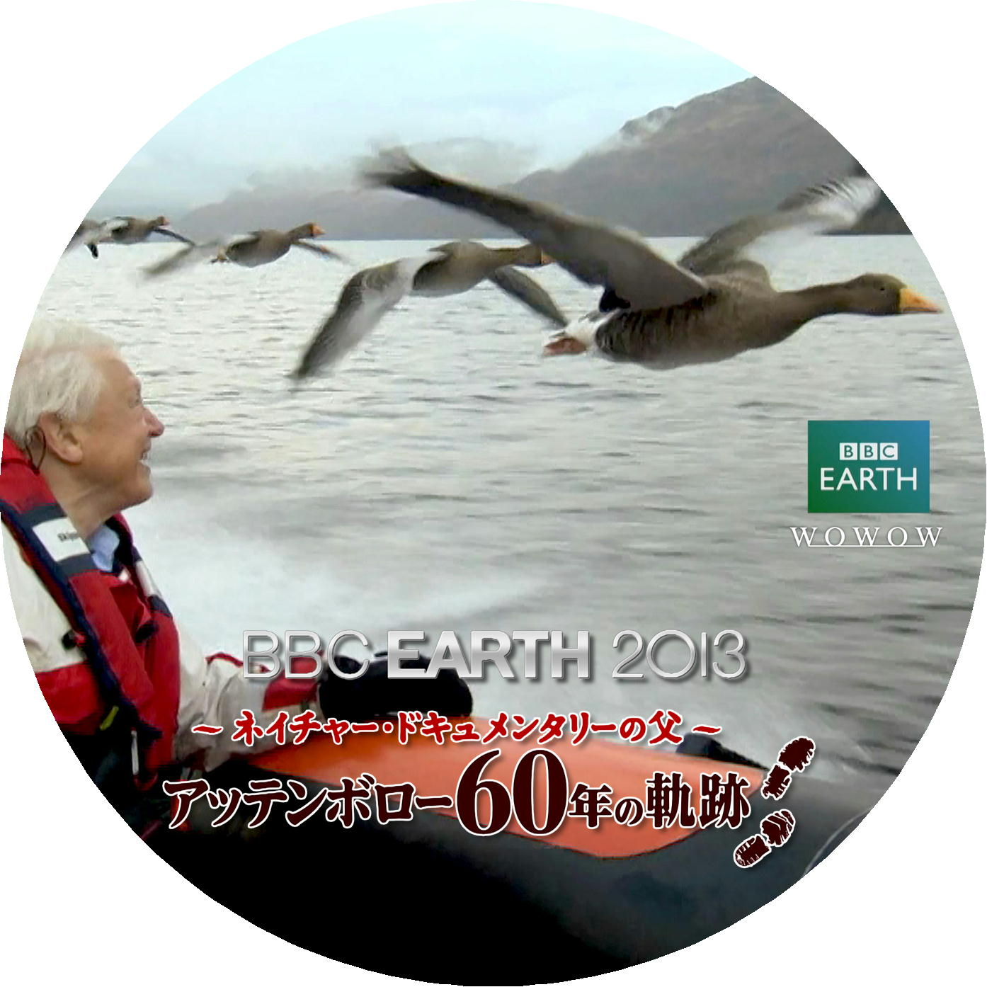 BBC アッテンボロー DVDラベル 水鳥