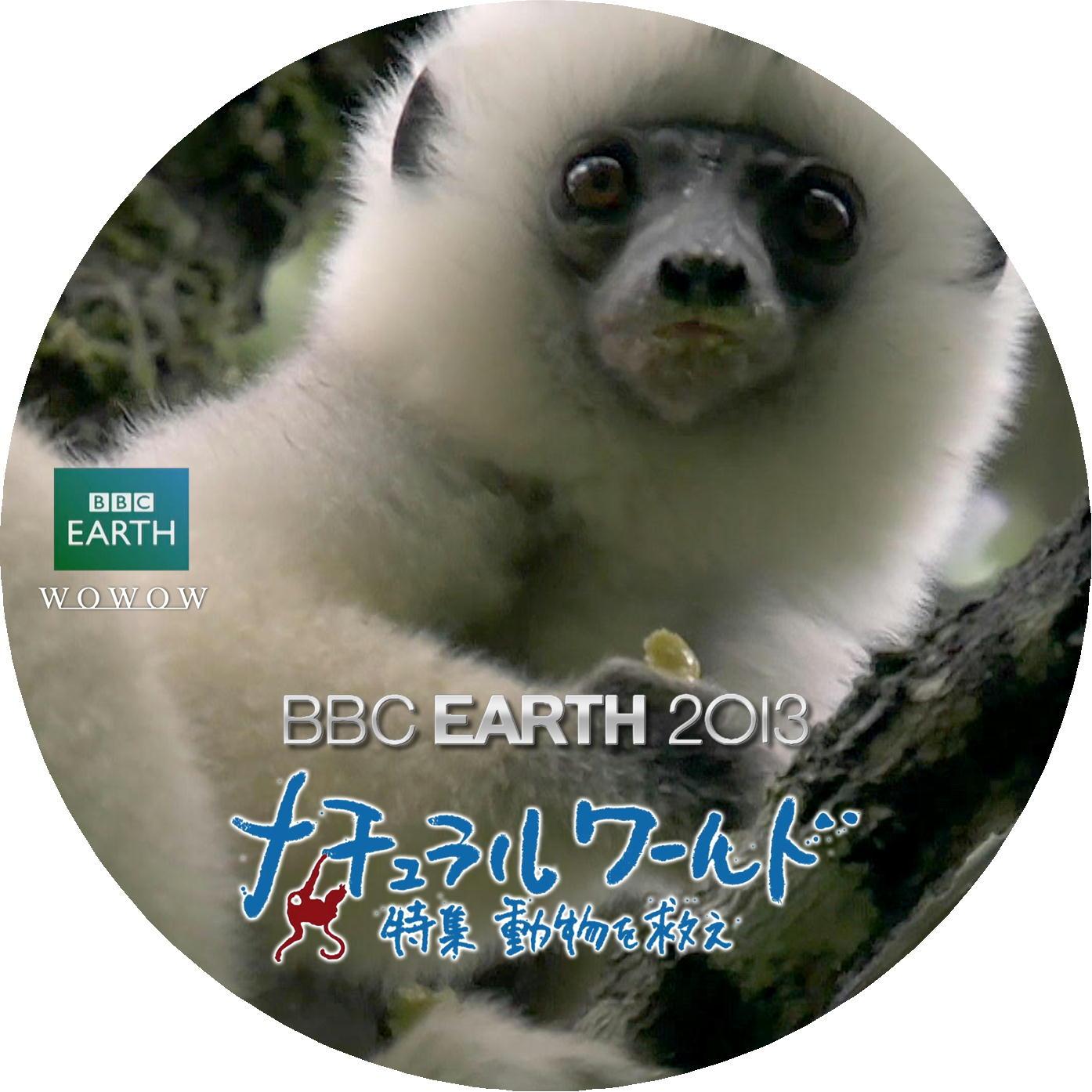 シファカ DVDラベル