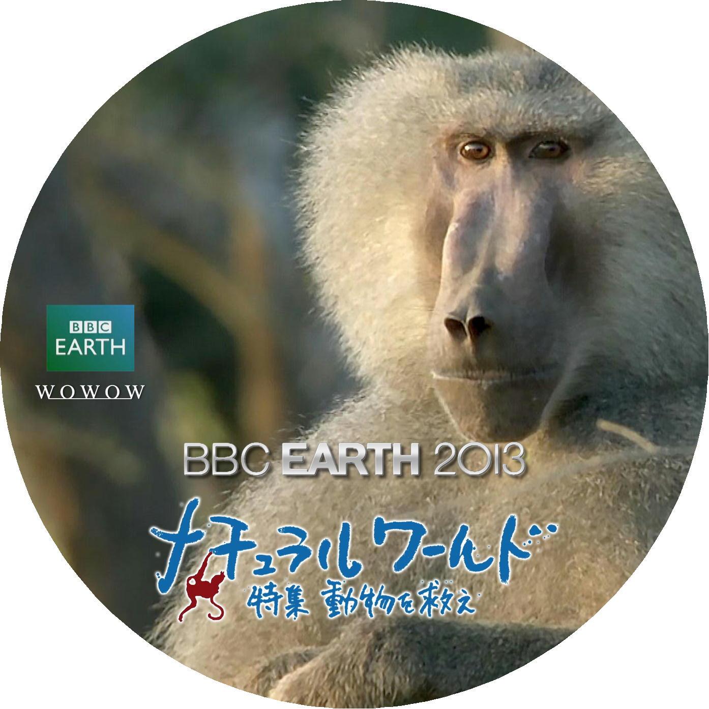 マントヒヒ DVDラベル