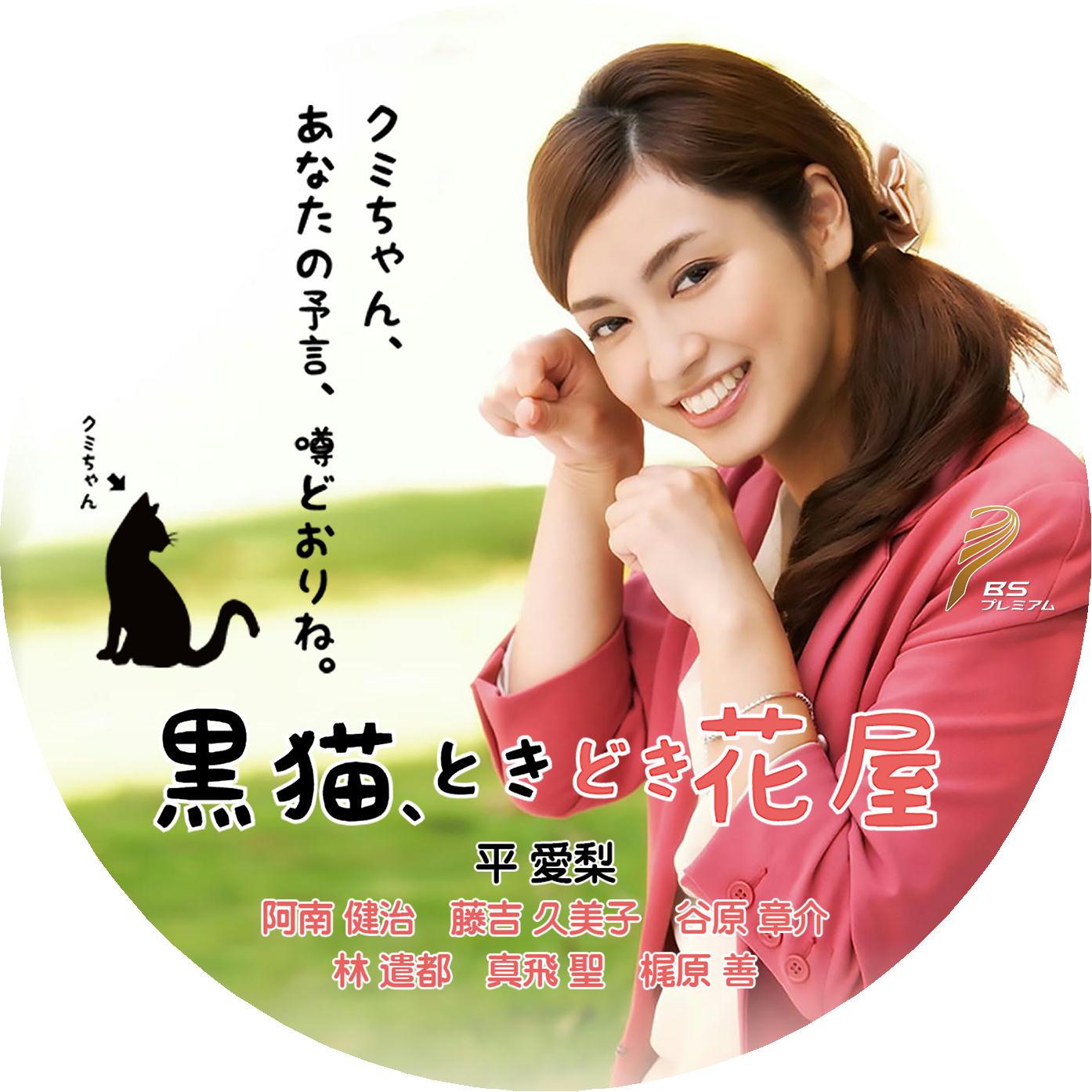 平愛梨 DVDラベル