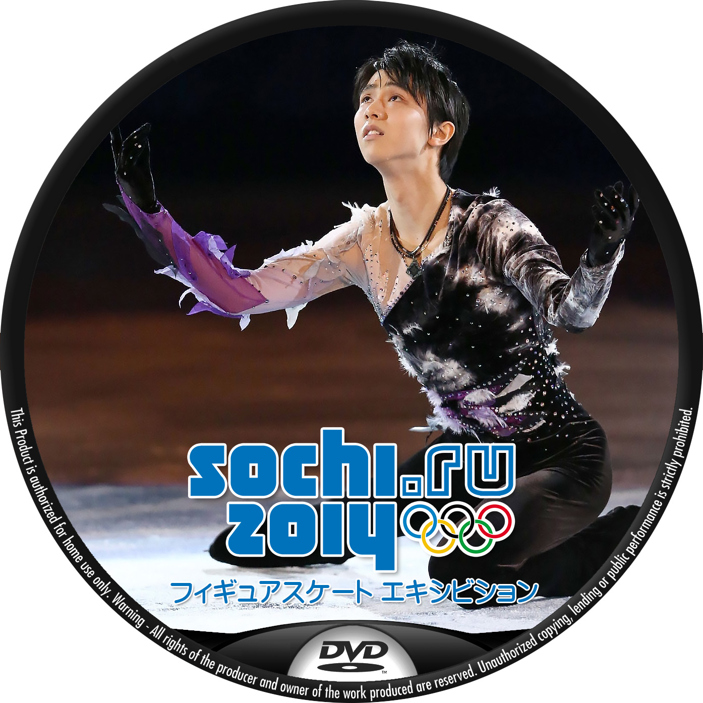Sochi_Figure_Exhibition-DVD2