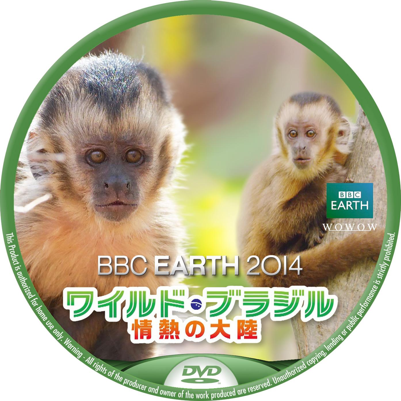 BBC2014  WOWOW ワイルドブラジル フサオマキザル DVDベル