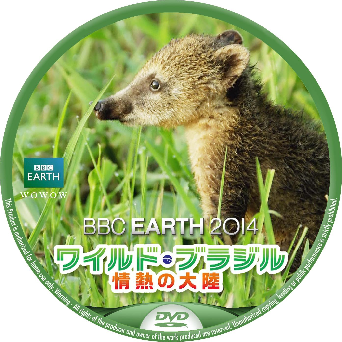 BBC2014  WOWOW ワイルドブラジル ハナグマ DVDラベル