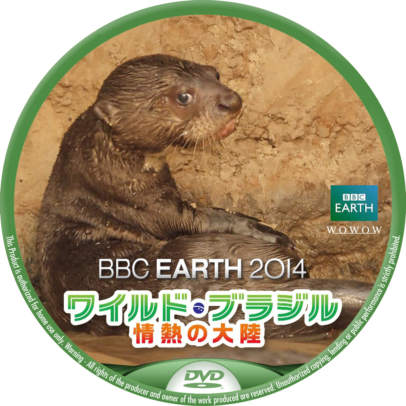 BBC2014  WOWOW ワイルドブラジル オオカワウソ DVDラベル