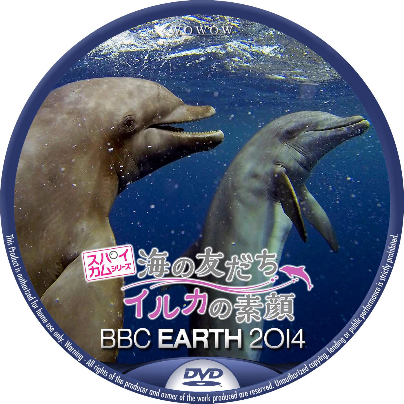 BBC EARTH 2014 スパイカム 海の友だち イルカの素顔 DVDラベル