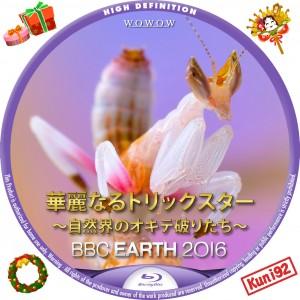 保護中: BBC EARTH 2016 華麗なるトリックスター ~自然界のオキテ破りたち~