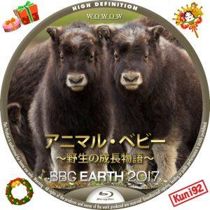 保護中: BBC Earth 2017 アニマル・ベビー ~野生の成長物語~