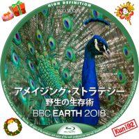 保護中: BBC Earth 2018 アメイジング・ストラテジー 野生の生存術