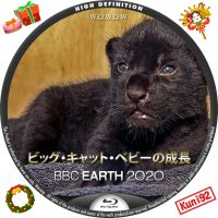 "<span class=""title"">保護中: BBC Earth 2020 ビッグ・キャット・ベビーの成長</span>"