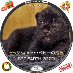 保護中: BBC Earth 2020 ビッグ・キャット・ベビーの成長